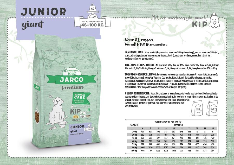 Giant Junior Kip